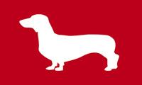 Dog Races